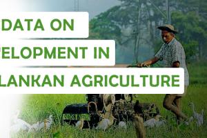 big data on development in sri lankan agriculture